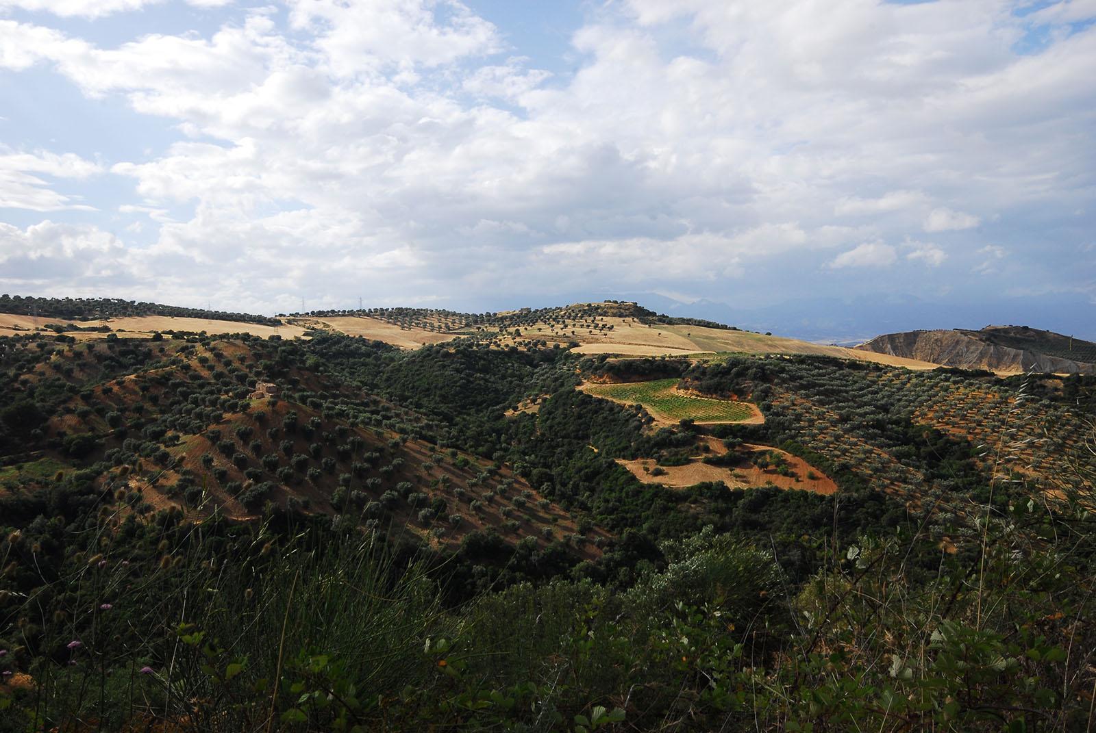 Cammino Basiliano: Serra del Gufo
