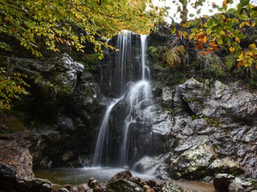 26 WILD Lago Ampollino – Gariglione