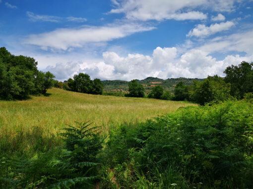 33 Sersale – Sellia Superiore