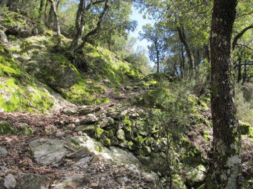 35 Villaggio Mancuso – Pentone