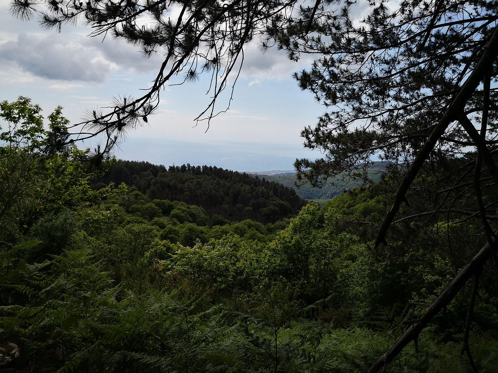 Punto panoramico San Sostene