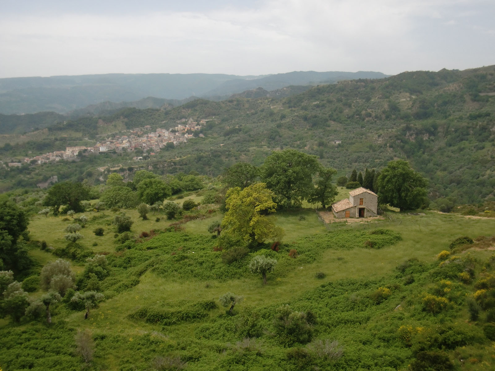 Panorama Martone