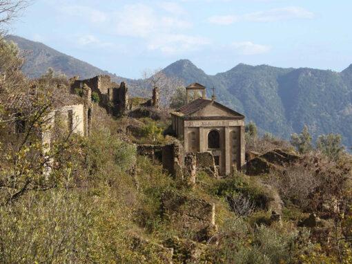 63WILD – Samo – Africo Vecchio