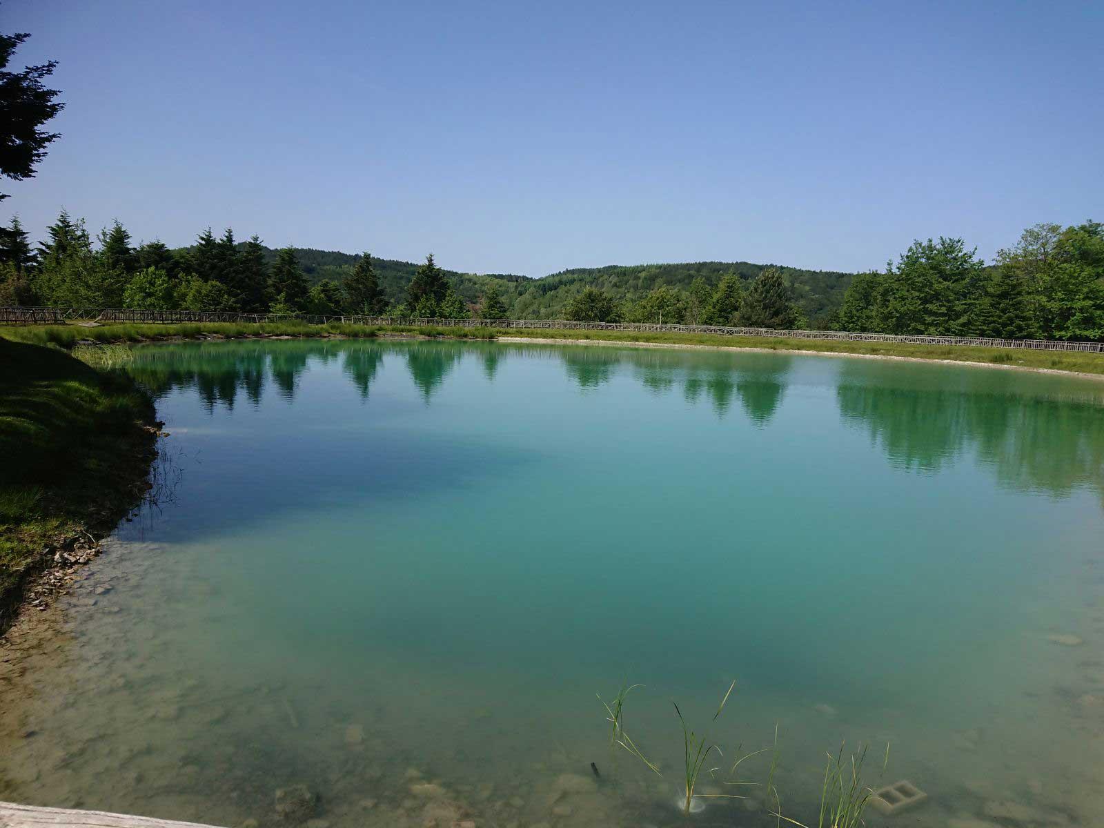 Lago Acero